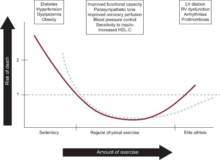 Image result for exercise j-curve