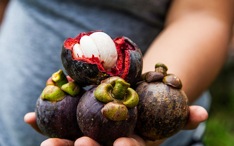 The Color Purple: Powerful Purple Superfoods to Perk Up ...