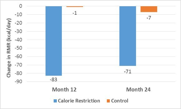 Calorie Restriction on Change in RMR