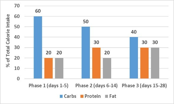 Carbs Protein Fat By Phase