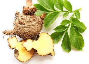 What does konjac root do