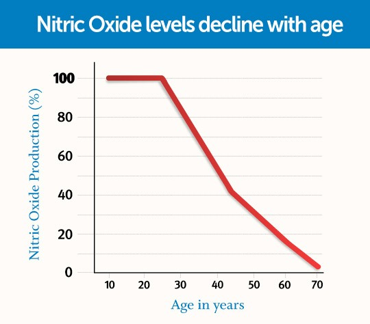 nitric oxide workout