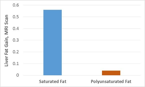 Sat and Poly Fat on Liver Fat Gain