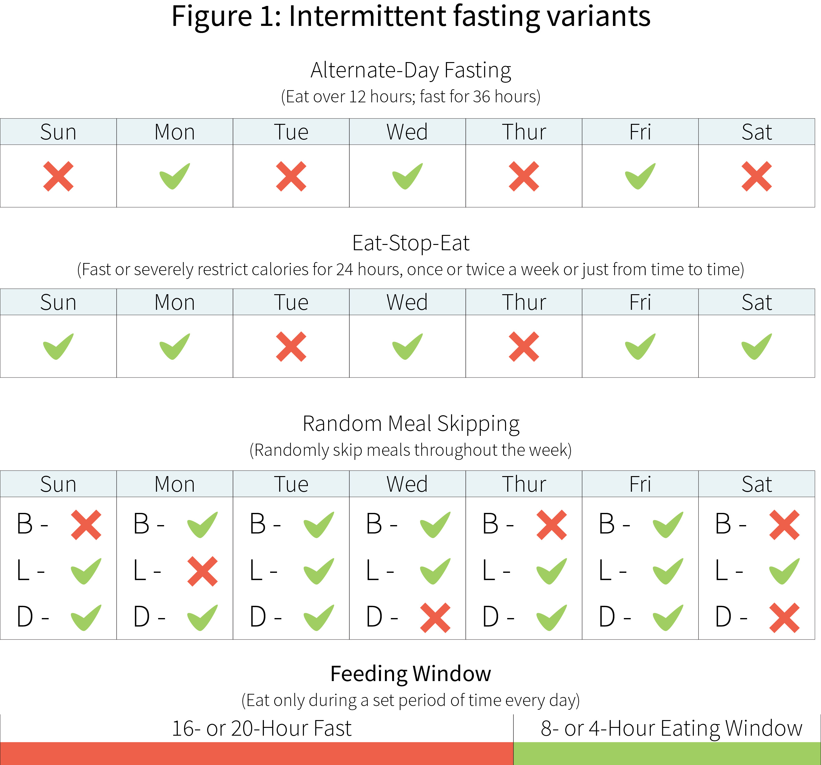 Intermittent Fasting has many health benefits ...