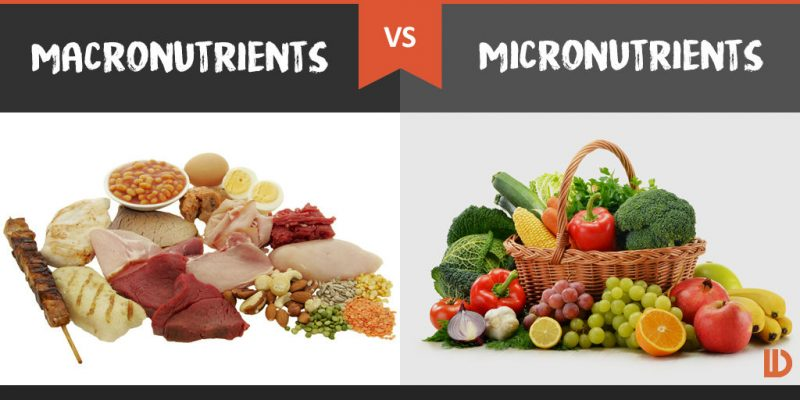 Micronutrients Whole Foods