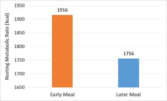 Metabolic Rate and Meals Chart